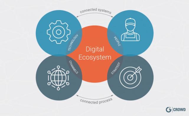 В стране будет создана новая IT эко-система