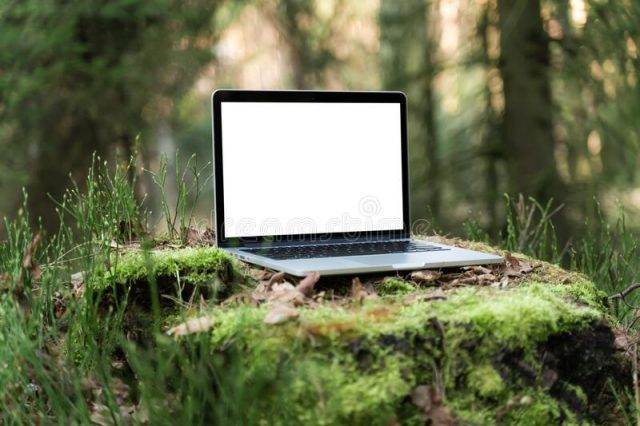 Собираем старые ноутбуки, чтобы посадить лес